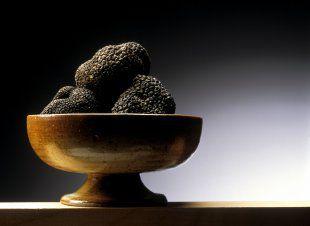 Le patrimoine génétique de la truffe est décodé