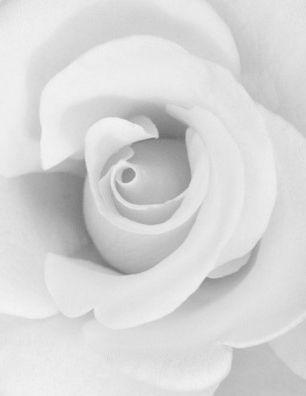 Message De Condoléances Et De Soutien
