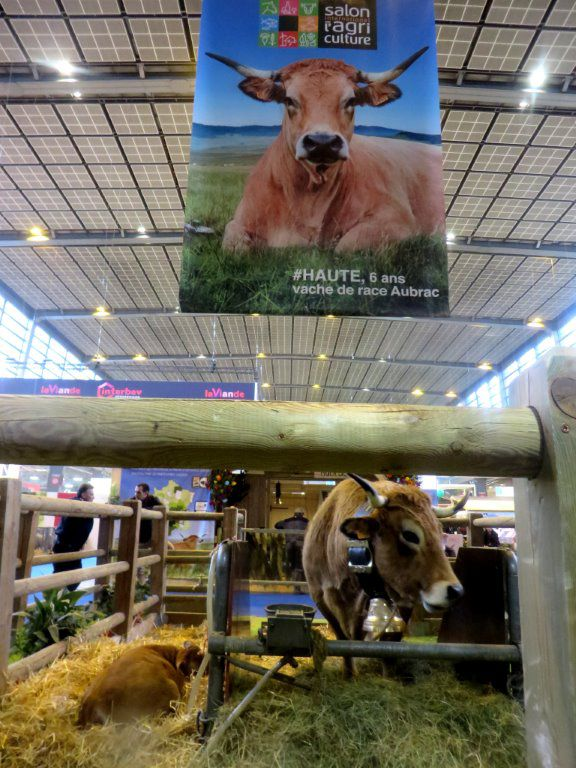 SALON DE L'AGRICULTURE 2018 Patrick.Asfaux@aftouch.fr
