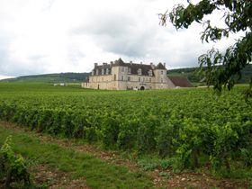 Quelques jours en Bourgogne Asfaux Patrick ©  A.F.Touch-cuisine