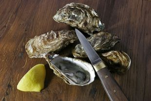 Opening oysters stockfood