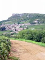 Pouilly-Fuiss�, un vin de Bourgogne � d�couvrir