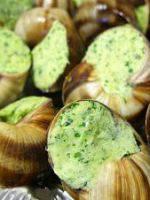 Escargots recettes