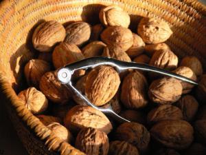 Grenoble Nut