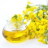 colza oil