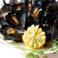 bouchot mussel