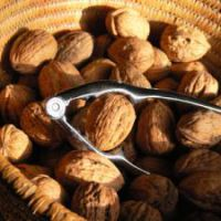 grenoble nut