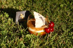 Compotée d'abricots, fromage blanc vanillé et cbs