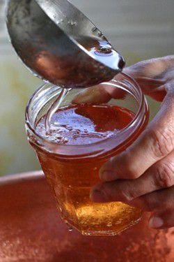 Gel e de pommes recette gel e de pommes aftouch cuisine for Aftouch cuisine com