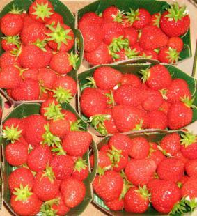 Gaspacho de fraises et poivrons rouges