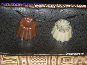 Petit Flamby Chocolat-Vanille