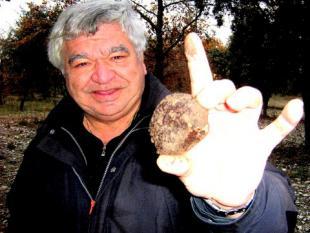 Savarin noir de truffes