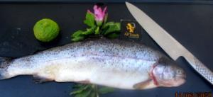 Truite de rivière saumonée planchée