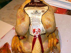 croquette de poulet