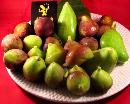 gâteau rustique aux figues à l'huile d'olive