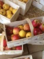 Douillons de pommes � la picarde