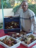 Gnocchi aux c�pes