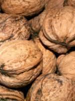 Velout� aux noix